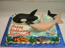 Ocean_Whale and Dolphin 3D