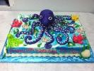 Octopus & Underwater Scene