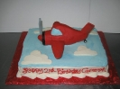 Airplane 3D