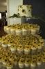 Cupcake Tower 2