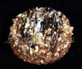 Tortes
